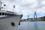 The Anzac Bridge, at the Sydney Fish Market