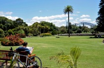 Royal Botanic Garden 1