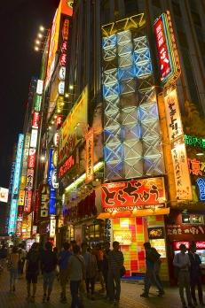 The Lights of Shinjuku