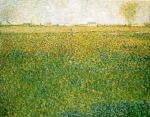 Alfalfa Fields, Saint Denis