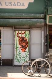 Tiger on Mission Street