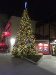 Castro Street Christmas Tree