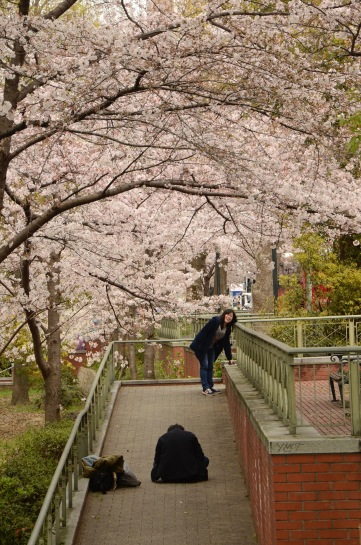 Posing In Osaka
