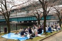 Picnic along the Kyū-Yodo River in Osaka