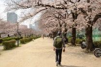 Strolling through Osaka's Minami-Temma Park
