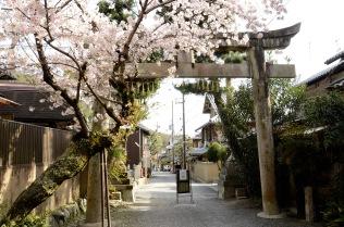 Cement torii near Kyoto's Philosopher's Path