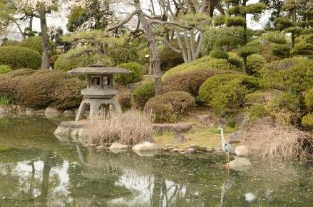 Serene scene near Osaka Castle